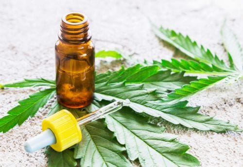 What Is CBD Oil? | CBD FAQs Answered | Holland & Barrett